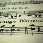 売れている曲の歌詞内で使われる一人称・二人称は時代ごとに変化しているのか?
